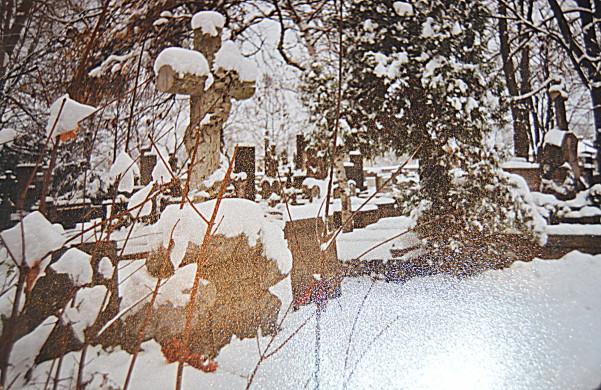 Это могила Викентия Козелл-Поклевского в Польше